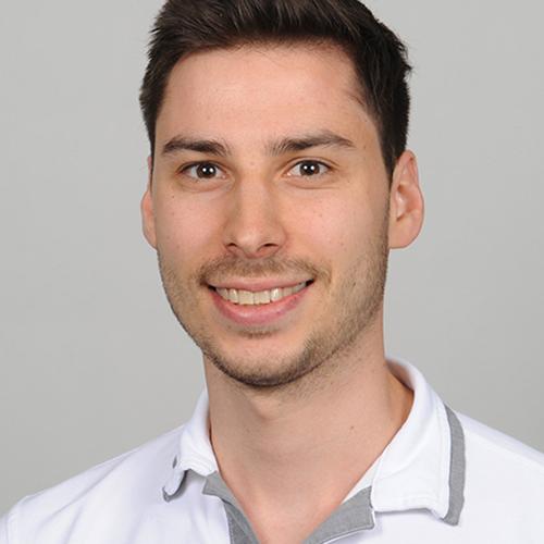 Andris Ladner, Robotics Spezialist