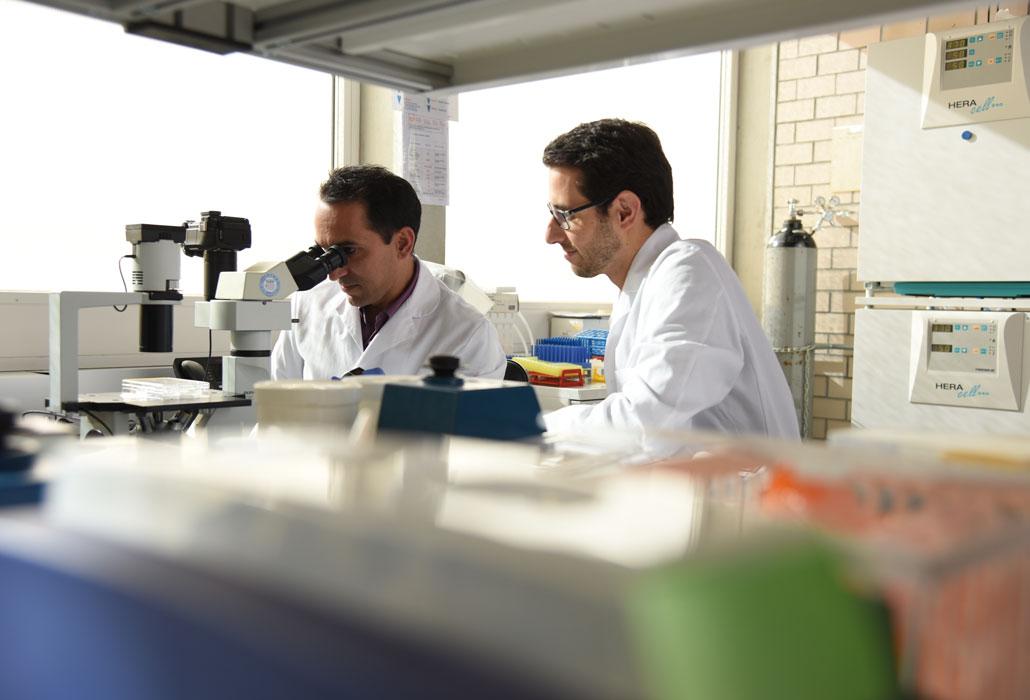 Wissenschaftler im Forschungslabor der SPF.