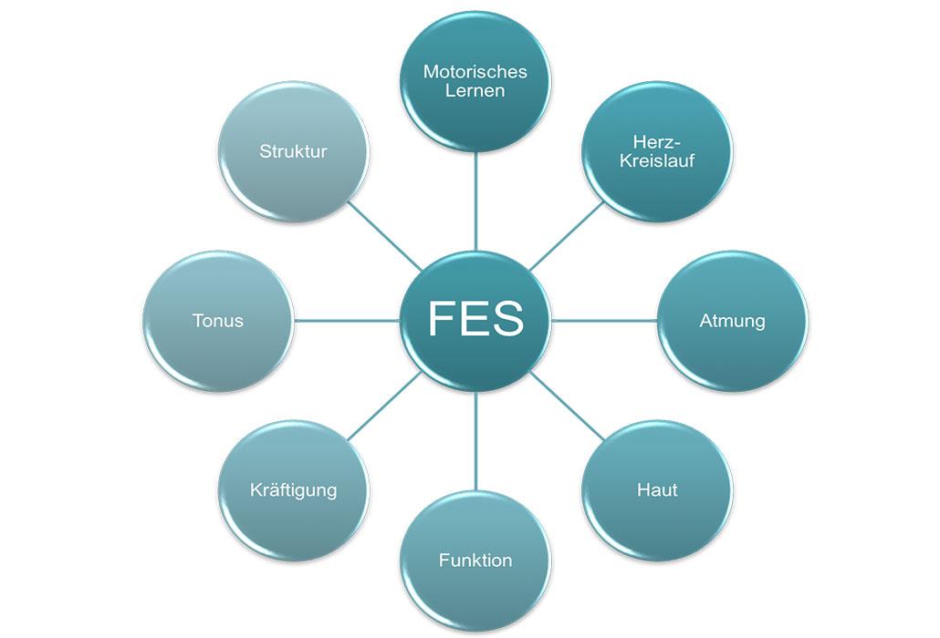 Funktionelle Elektrostimulation FES