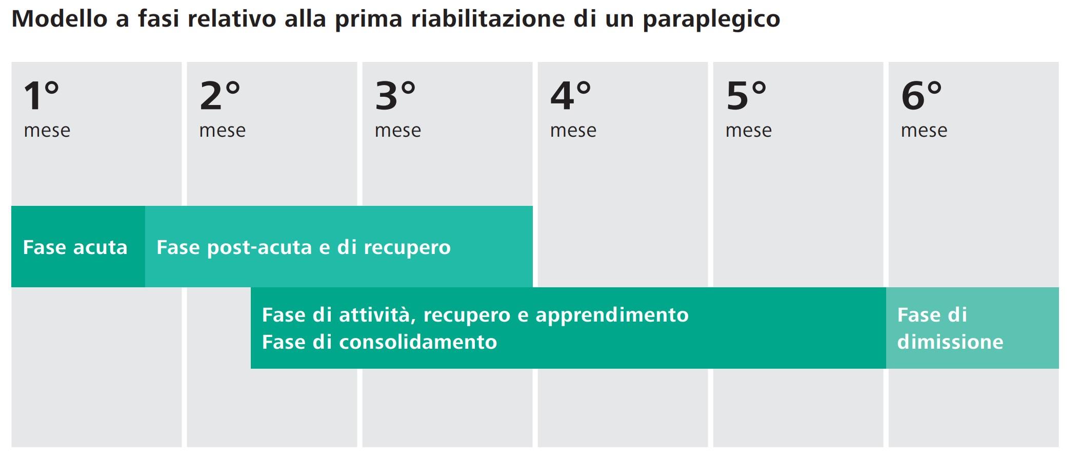 Phasenmodell für einen Paraplegiker in der Erstrehabilitation