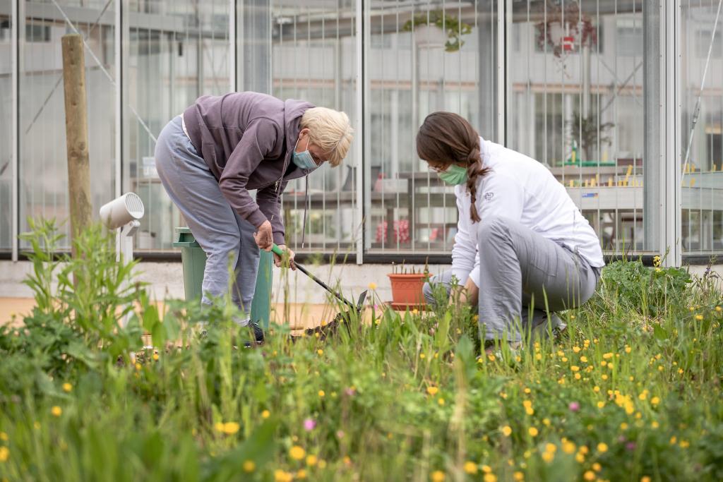Zwei Menschen im Thearpiegarten